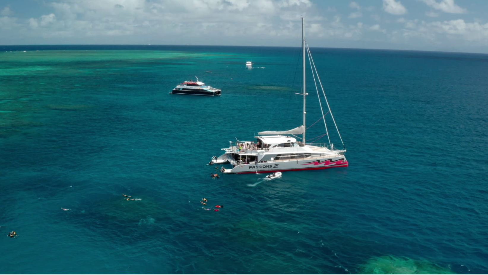 Passions of Paradise, Dreamtime Dive & Snorkel, Aroona Luxury Boat Charters together at Milln Reef to kick off Great Reef Census (must credit_ Citizens of the Great Barrier Reef)