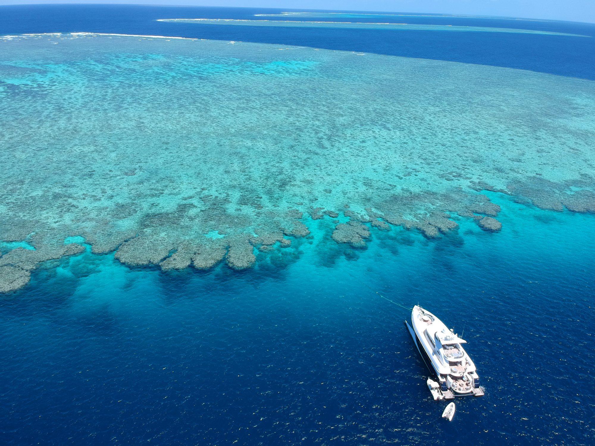 Spirit on the reef
