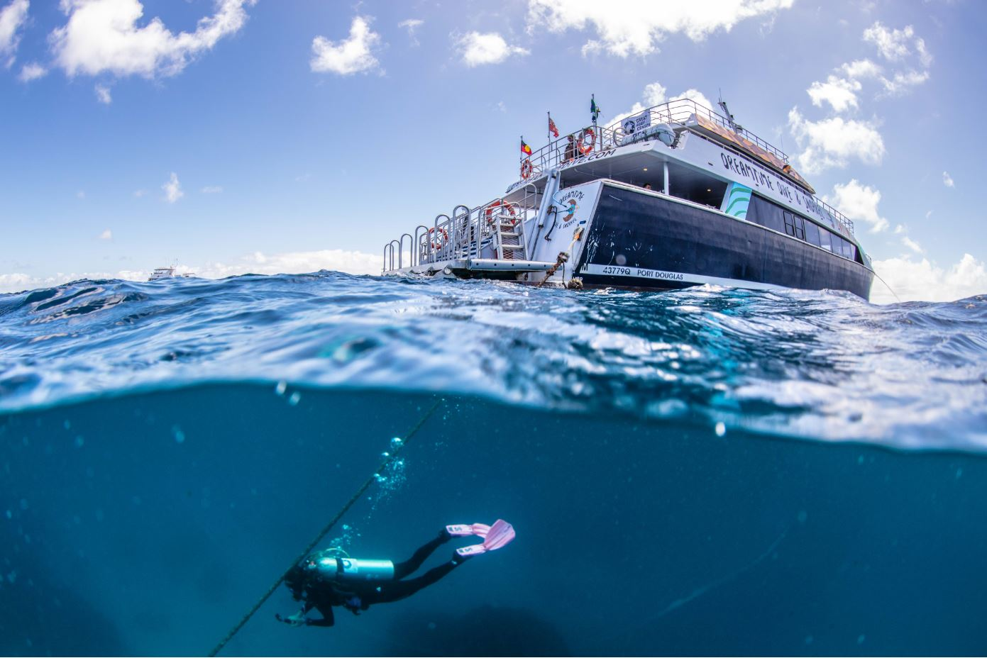 Split shot – Michelle Barry dives from Dreamtime Dive & Snorkel as part of the Great Reef Census (must credit_ Citizens of the Great Barrier Reef)